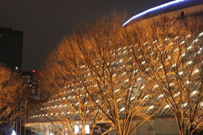 dome02.jpg